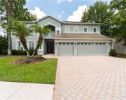 7412 Night Heron Drive, Land O' Lakes image