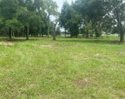Trilby Trail, Dade City image