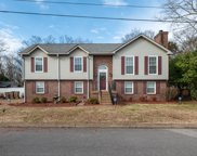 108 Smith Springs Ct, Nashville image