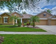 15208 Merlinpark Place, Lithia image