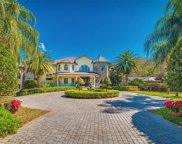 3652 Woodridge Place, Palm Harbor image