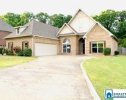 223 Mountain Lake Trl, Alabaster image