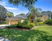 3508 Old Course Lane, Valrico image