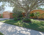 323 Burnt Pine Dr, Naples image