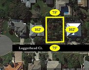45 Loggerhead Court, Ponce Inlet image