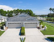11305 Cambray Creek Loop, Riverview image