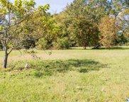 10 Savannah Circle, Cedar Bluff image