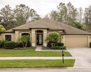 15408 Princewood Lane, Land O' Lakes image