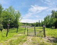 Lot 8 Forest View Drive, Effingham image