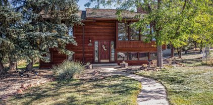 6136 Stormy Mountain Court, Parker