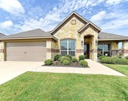 301 Palacios Place, Forney image