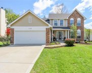 719 Falcon Hill  Trail, O'Fallon image