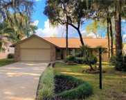 154 Citrus Tree Lane, Longwood image