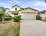 10717 Shady Preserve Drive, Riverview image