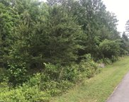 5695 Apple Meadow Drive, Gibsonville image