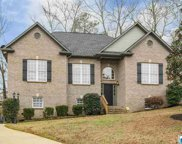 58 Fawns Way, Odenville image
