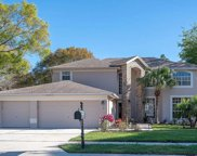 5682 Stag Thicket Lane, Palm Harbor image