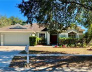 12416 Windmill Cove Drive, Riverview image