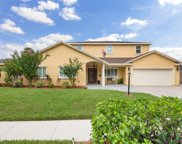 11606 Lipsey Road, Tampa image
