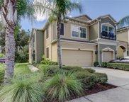 12538 Silverdale Street, Tampa image