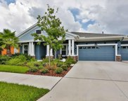 8131 Swiss Chard Circle, Land O' Lakes image