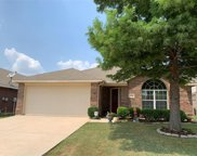 8540 Cactus Patch Way, Fort Worth image