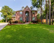 18602 Candleview Drive, Spring image