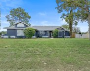 11154 Monarch St, Spring Hill image