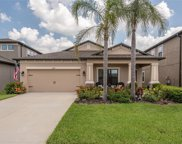 11442 Amapola Bloom Court, Riverview image
