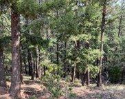 2199 Badger Drive, Larkspur image