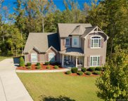 1233  Shelly Woods Drive, Indian Land image