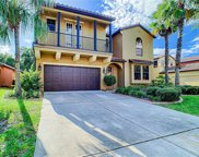 20311 Heritage Point Drive, Tampa image