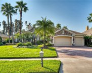 21228 Quiet Haven Court, Land O' Lakes image