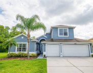 3005 Silver Leaf Court, Kissimmee image