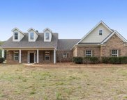 3117 Old Snapping Shoals Rd, Mcdonough image