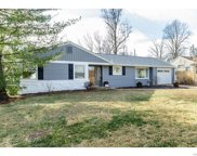 212 Timbercrest  Road, St Louis image