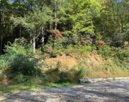Palmer Road, Gatlinburg image