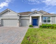 11939 Cinnamon Fern Drive, Riverview image