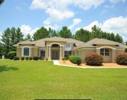 7081 Nw 113th Ln 32626, Chiefland image