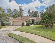 491 Winding Creek Place, Longwood image