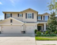 12327 Fairlawn Drive, Riverview image
