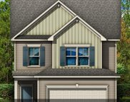 910 North Sage Drop Road, Blythewood image