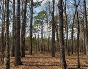 3 Friendly Pines Road Unit #Lot 3, Broken Bow image