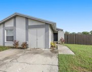 10508 Pathview Place, Tampa image