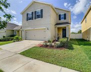 10139 Geese Trail Circle, Sun City Center image