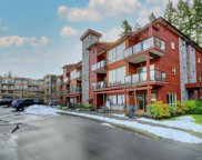 627 Brookside  Rd Unit #307, Colwood image