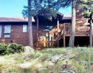 13242 Riley Peak Road, Conifer image