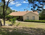 22402 Briarview Dr, Spicewood image
