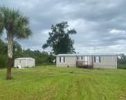 1625 SW OLD SPANISH RD, Fort White image