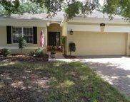 3059 Pinnacle Court W, Clermont image
